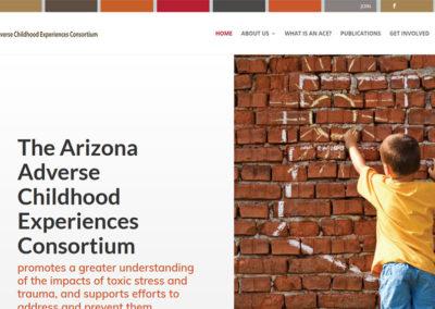 AZ ACE Consortium