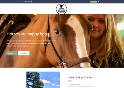 Cedar Springs Stables Site Makeover